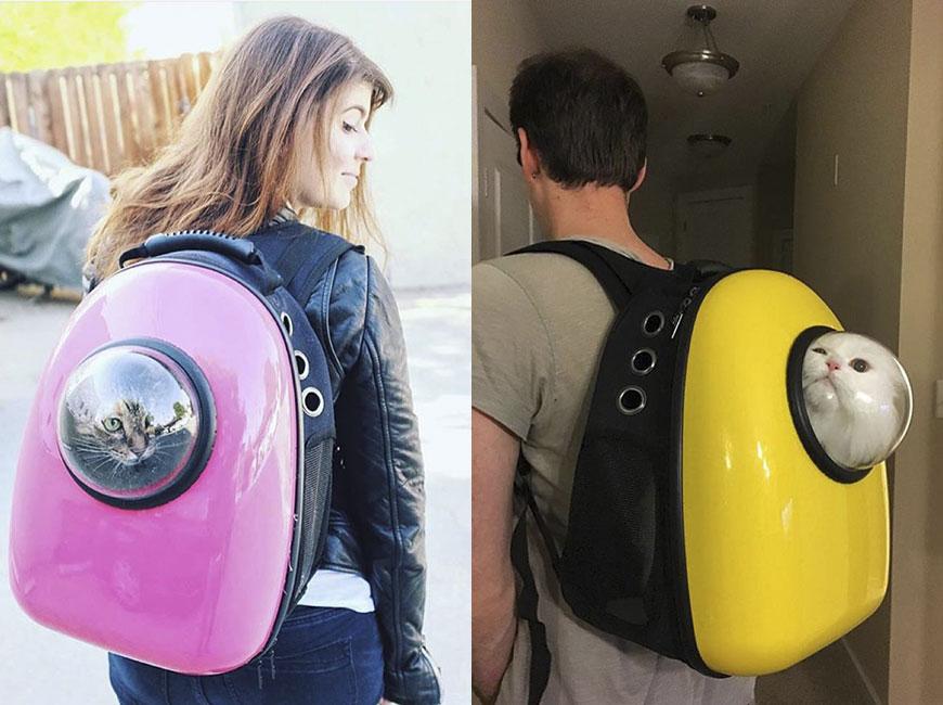 Купить рюкзак переноску в спб рюкзак школьный для девочки с короной