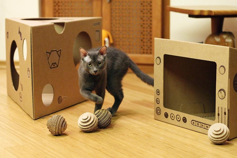 Для кошек своими руками из коробок
