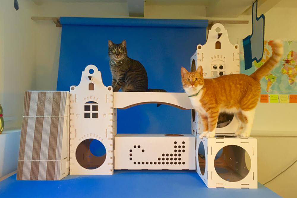 Игровой центр для кошек своими руками 40