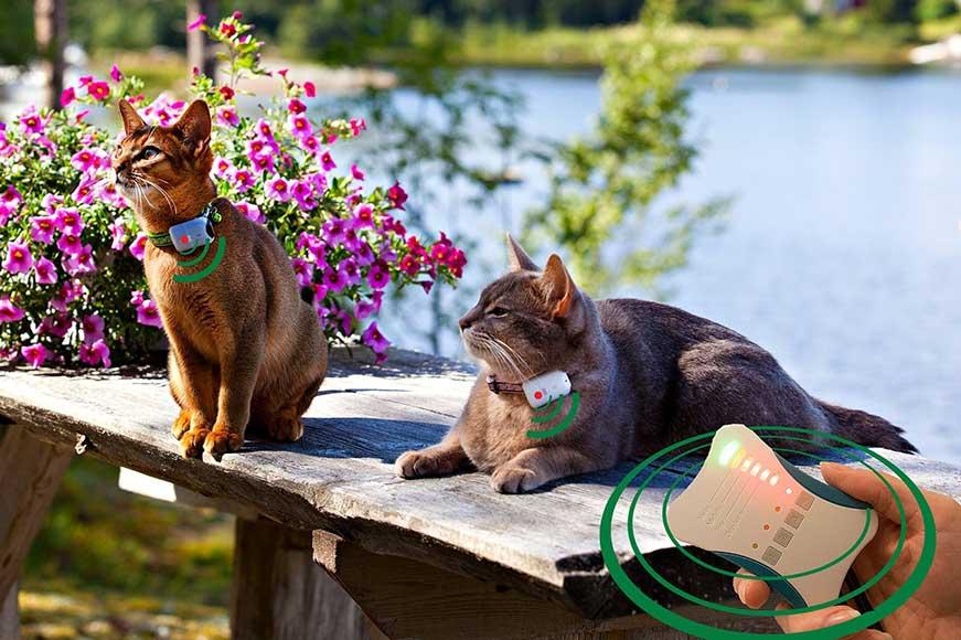 Датчики слежения для котов
