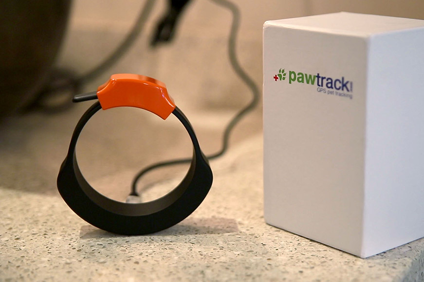 PawTrack